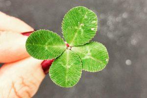 Ter sorte ou ter azar – Toninho Aribati